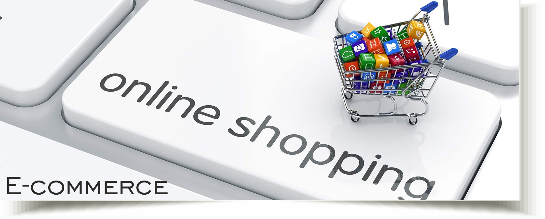 Portfolio e commerce